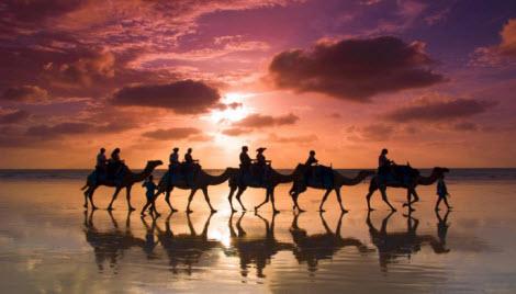 Верблюды идут, карта трассы