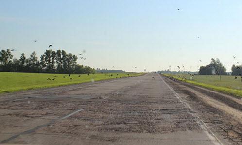 Трасса А349, Змеиногорский тракт