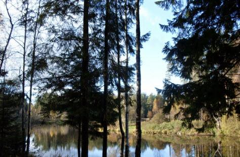 Светлое озеро, Токсово, достопримечательности трассы Р33