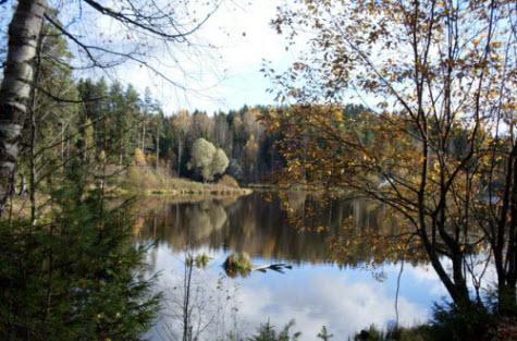Светлое озеро и Токсовский лесопарк, достопримечательности трассы Р33