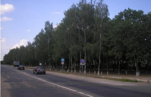 Дорога Р113, трасса Р113, рогачевское шоссе