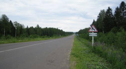 Трасса Р157, на участке Пыщуг Никольское