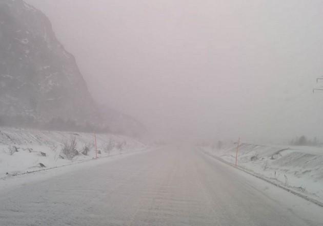 туман на дороге в мурманск