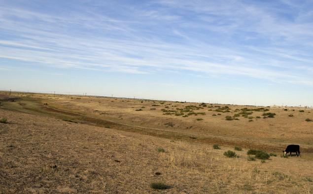 поездка на эльтон песок