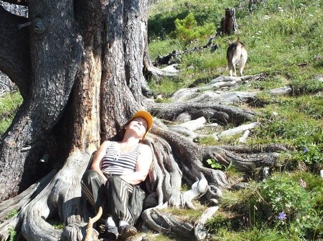 поездка по аршану отдых на корнях