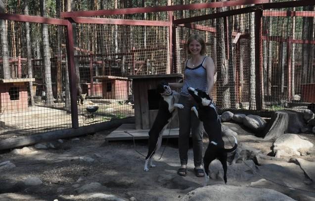 карелия собачий питомник