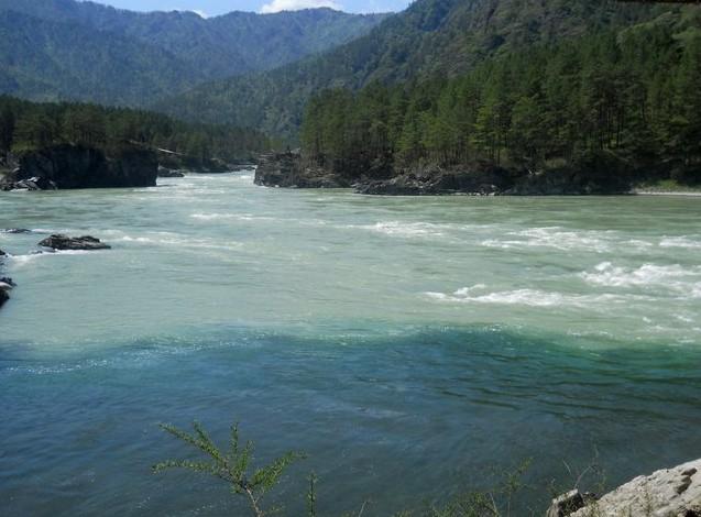 слияние рек Чемал и Катунь на алтае 2015