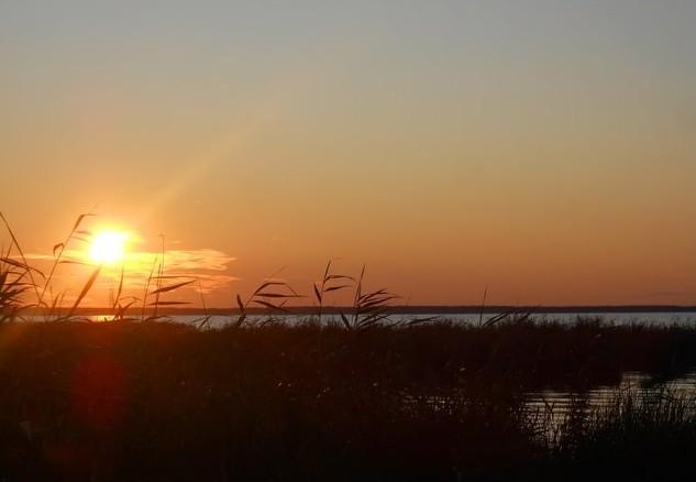 утро на берегу озера ик