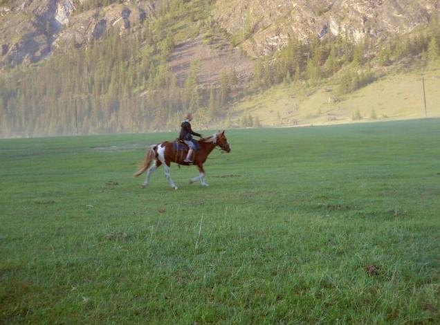 по алтаю на лошади