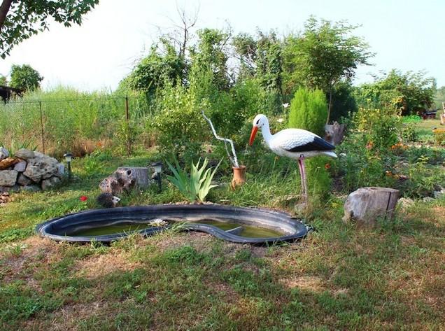 аисты на огороде