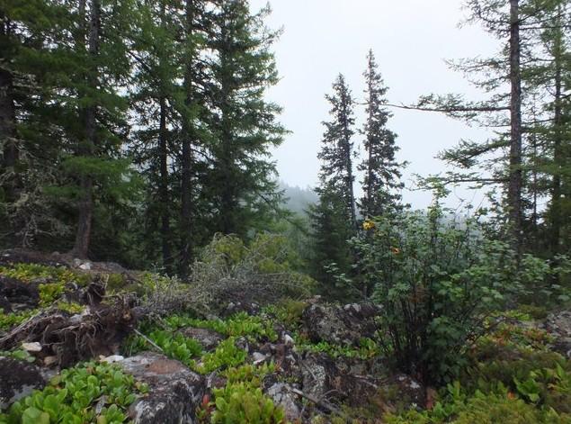 Путешествие на Аршан тропа на озеро Дождевое