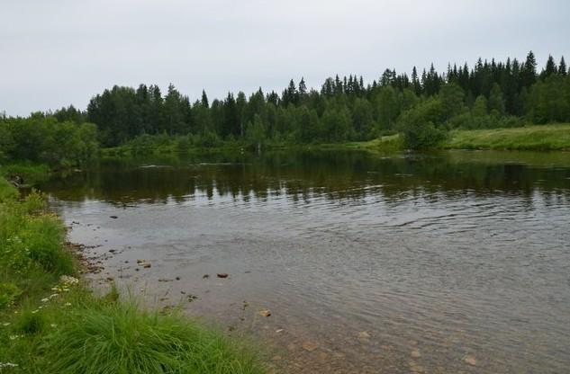 поездка на север россии река пинега