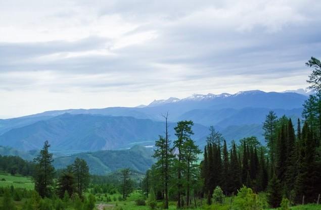 алтай по дороге на озера красной горы
