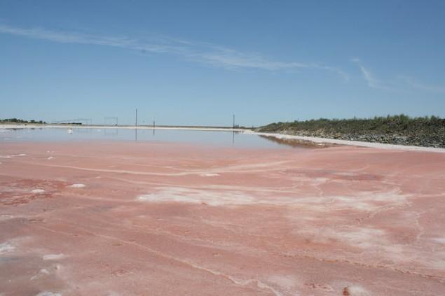 соль на озере баскунчак