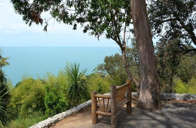 скамейка в ботаническом саду батуми