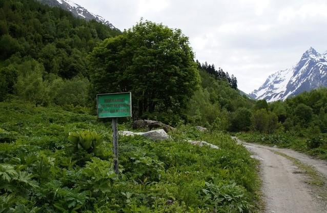 горная дорога домбай