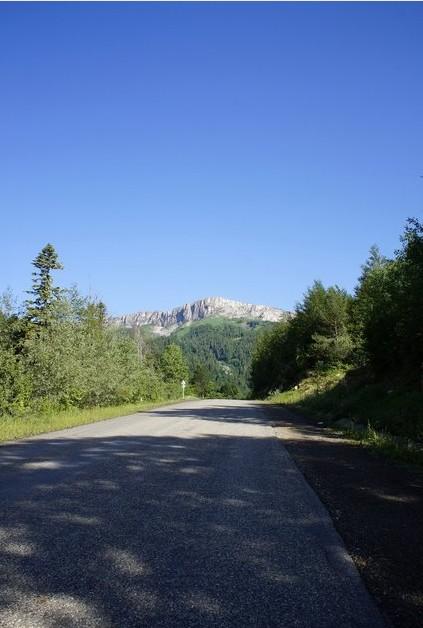 дорога к яворовой поляне