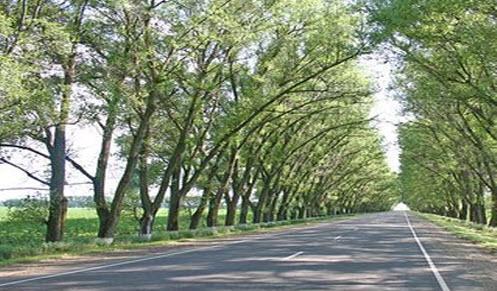 Трасса р268, дорога р268
