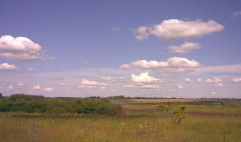 Вид с трассы А142,