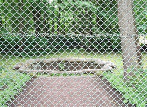 Восьмигранный колодец за забором, Гатчина, трасса М20