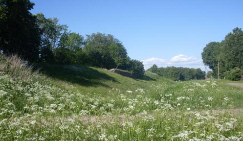 Останки гдовской крепости, трасса Р60