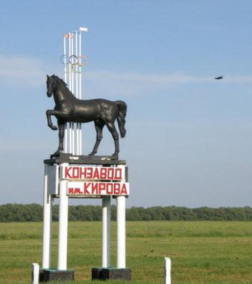 трасса р270, указатель конзавод, конь