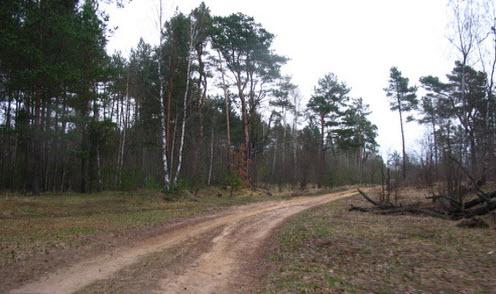 Трасса Р134, старо-смоленская дорога