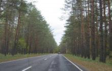 дорога к партизанской поляне