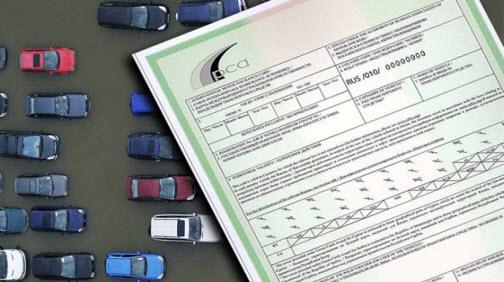 полис зеленая карта, green card
