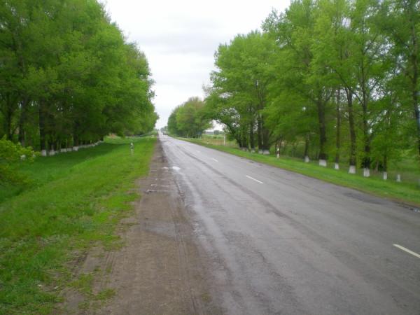 дорога Обливская -Вешенская возле станицы Каргинская