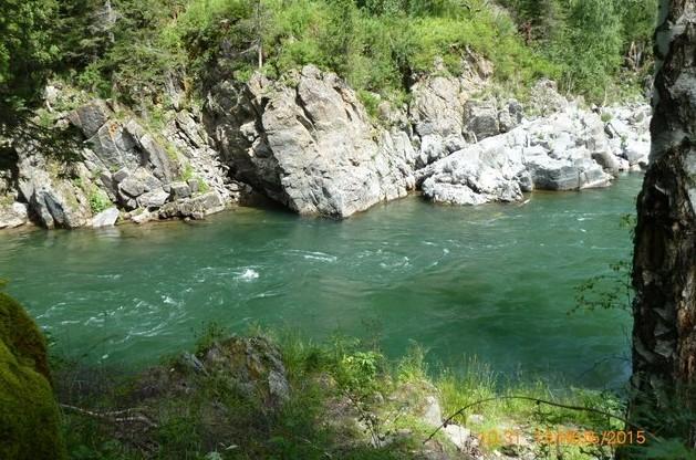 алтай река кумир