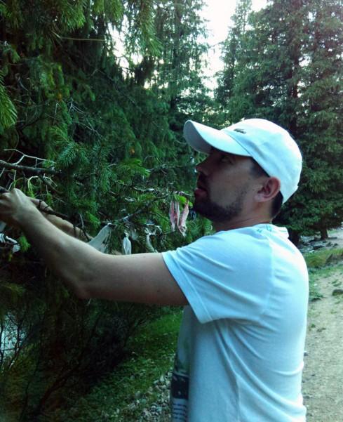 поездка на иссык - куль ленточки на дереве