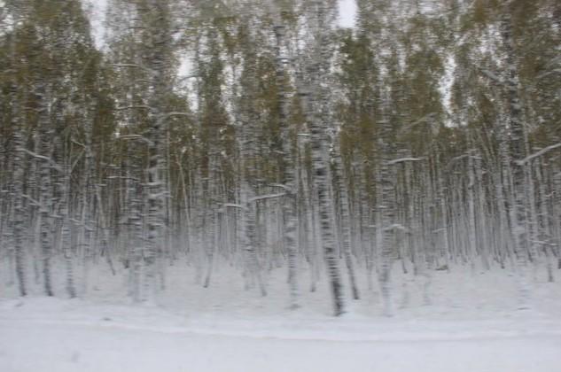 снег на м-7