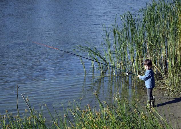 сын ловит рыбу
