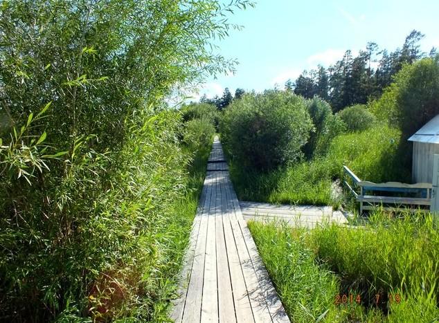 деревяная дорожка на курорт умхей