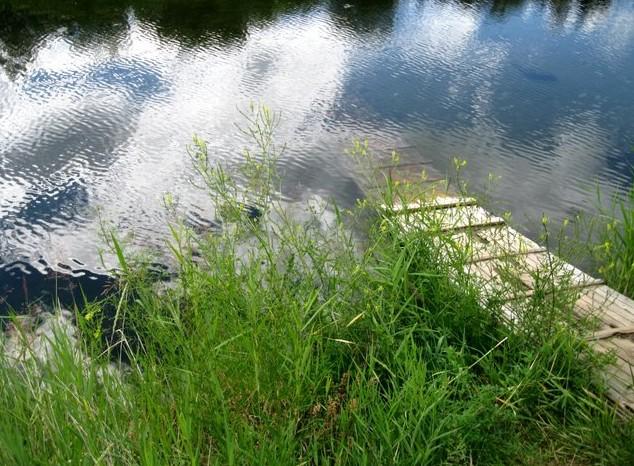 путешествие на умхей  дорожка в озеро