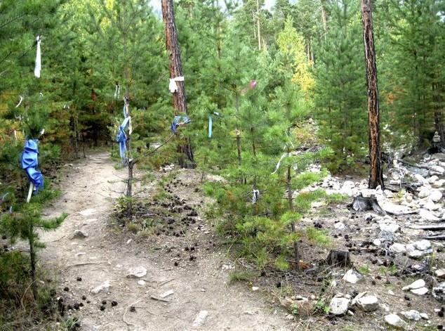 тропа Янжимы в баргузинской долине