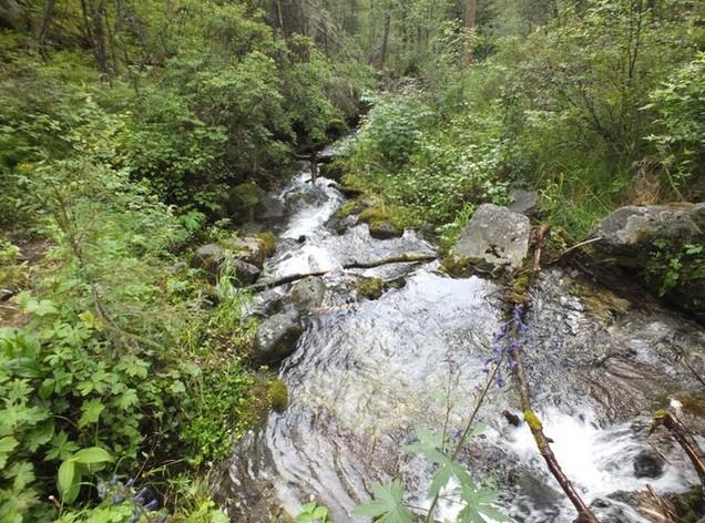 Путешествие на Аршан река шихтолайка