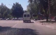бессметрный пешеход прокатился на троллейбусе