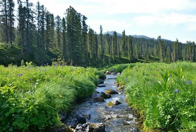 поездка в ергаки маленький ручей
