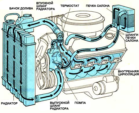 Тосол или антифриз: что лучше заливать в систему охлаждения