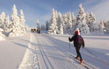 Где в России покататься на лыжах с комфортом и дешево