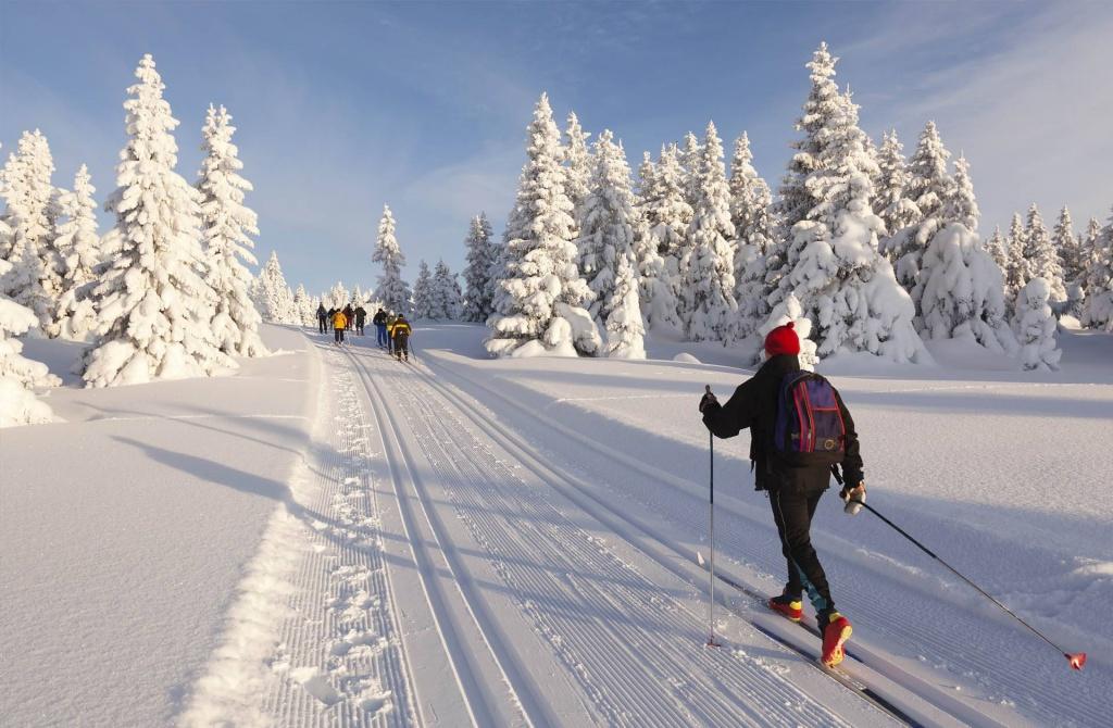картинки или фото на лыжах маске