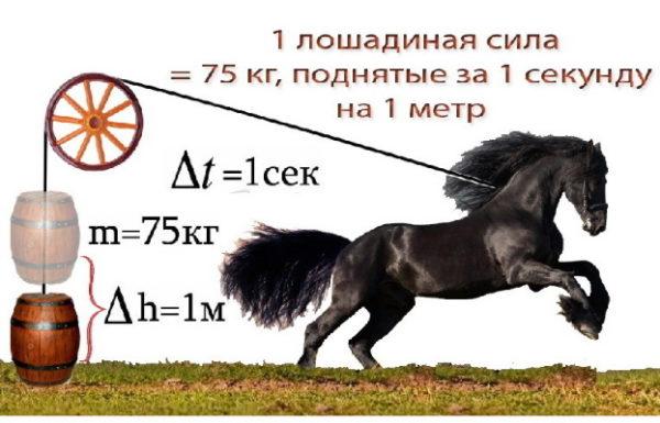 Правила перевода кВт в лошадиные силы и наоборот